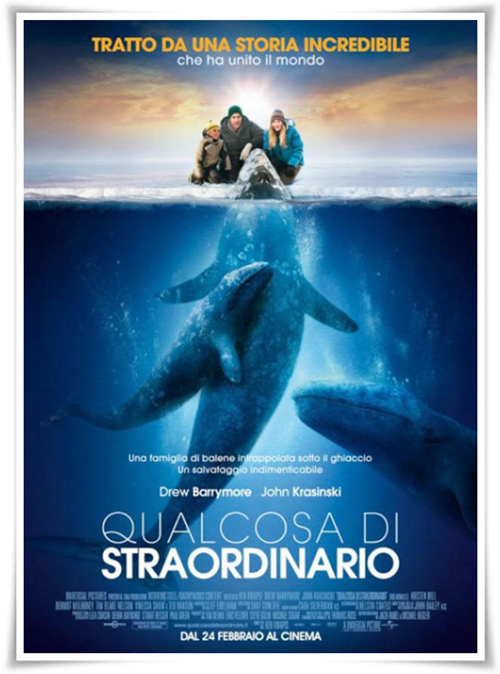 Qualcosa.Di.Straordinario.2012.iTALIAN.MD.TELESYNC-DEEP[MT].avi