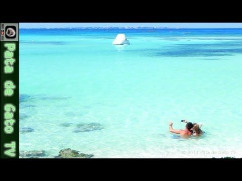 Mejor fecha para visitar cancún y dónde hospedarte